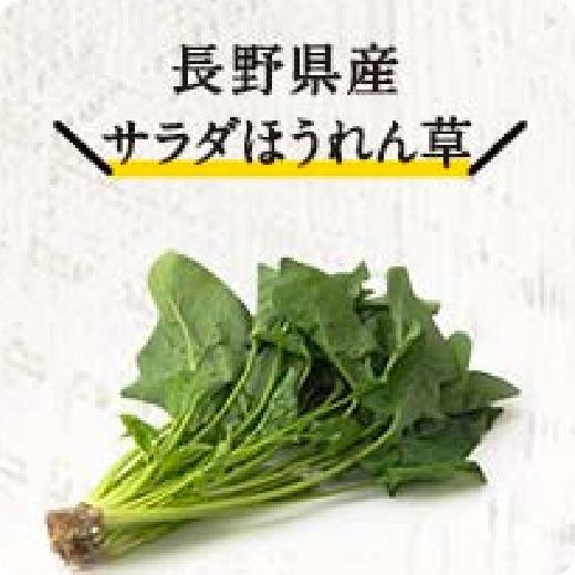 長野県産サラダほうれん草
