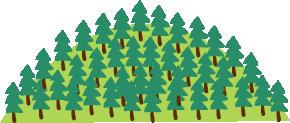 年間想定 CO2 削減量 杉の木198本分(2,761kg)